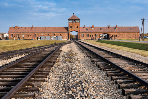 Auschwitz Birkenau and Salt Mine One Day Private  Tour | TOUR GUIDE KRAKOW-3